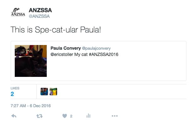 paula-cat